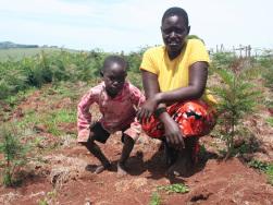 Nachhaltige Entwicklung durch Wiederaufforstungsmaßnahme in Kenia